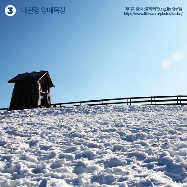 겨울여행-04